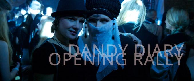 Banner_Dandy_Diary